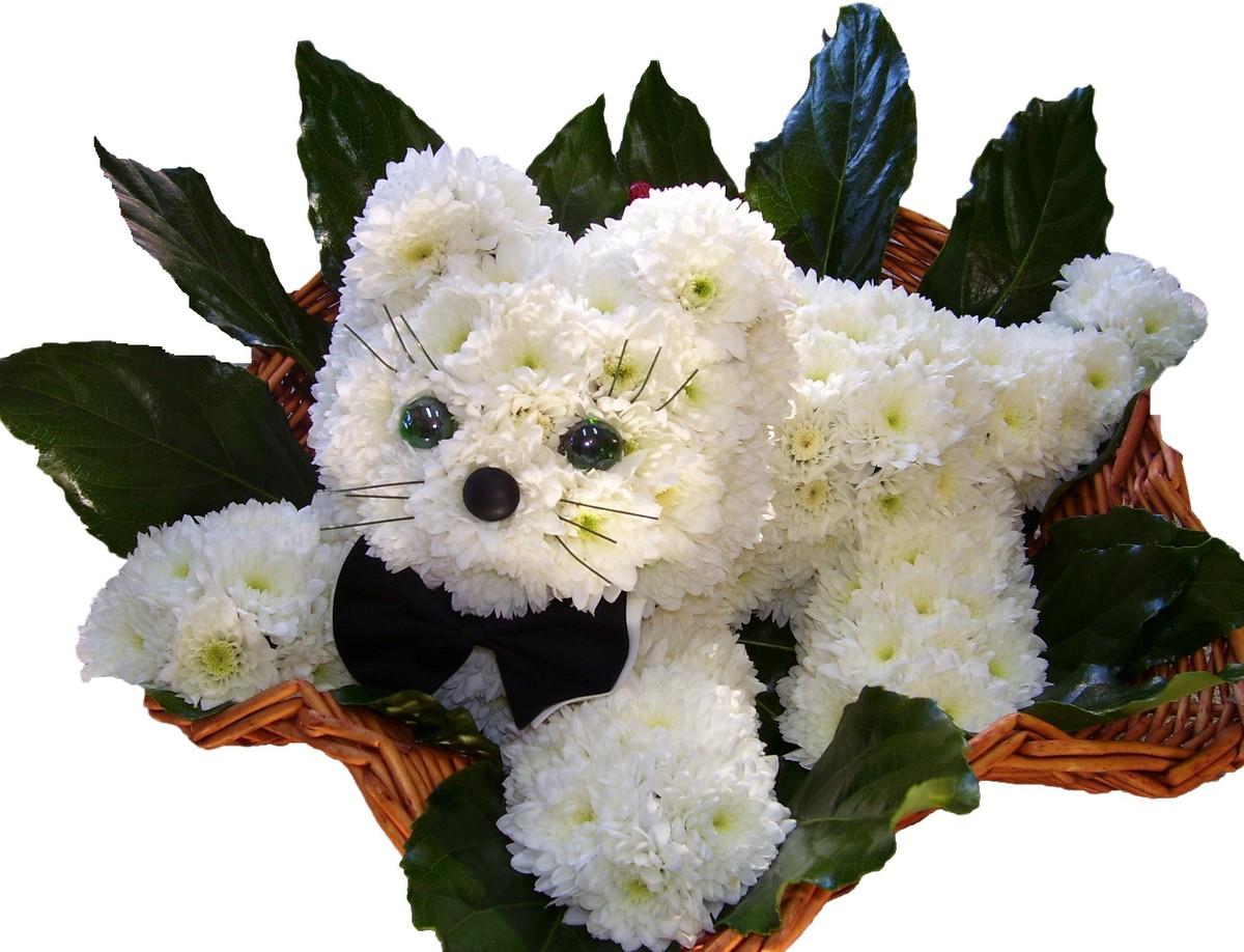 Самые красивые букеты из цветов