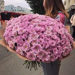 Букет из розовых хризантем